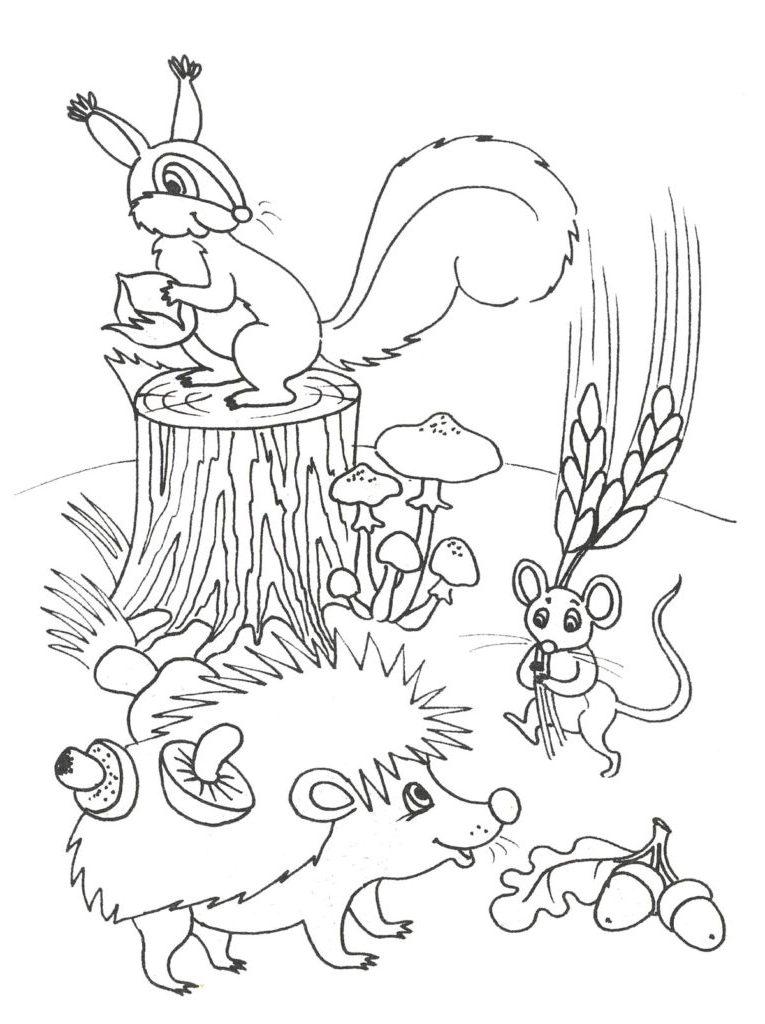 Природа малюнки
